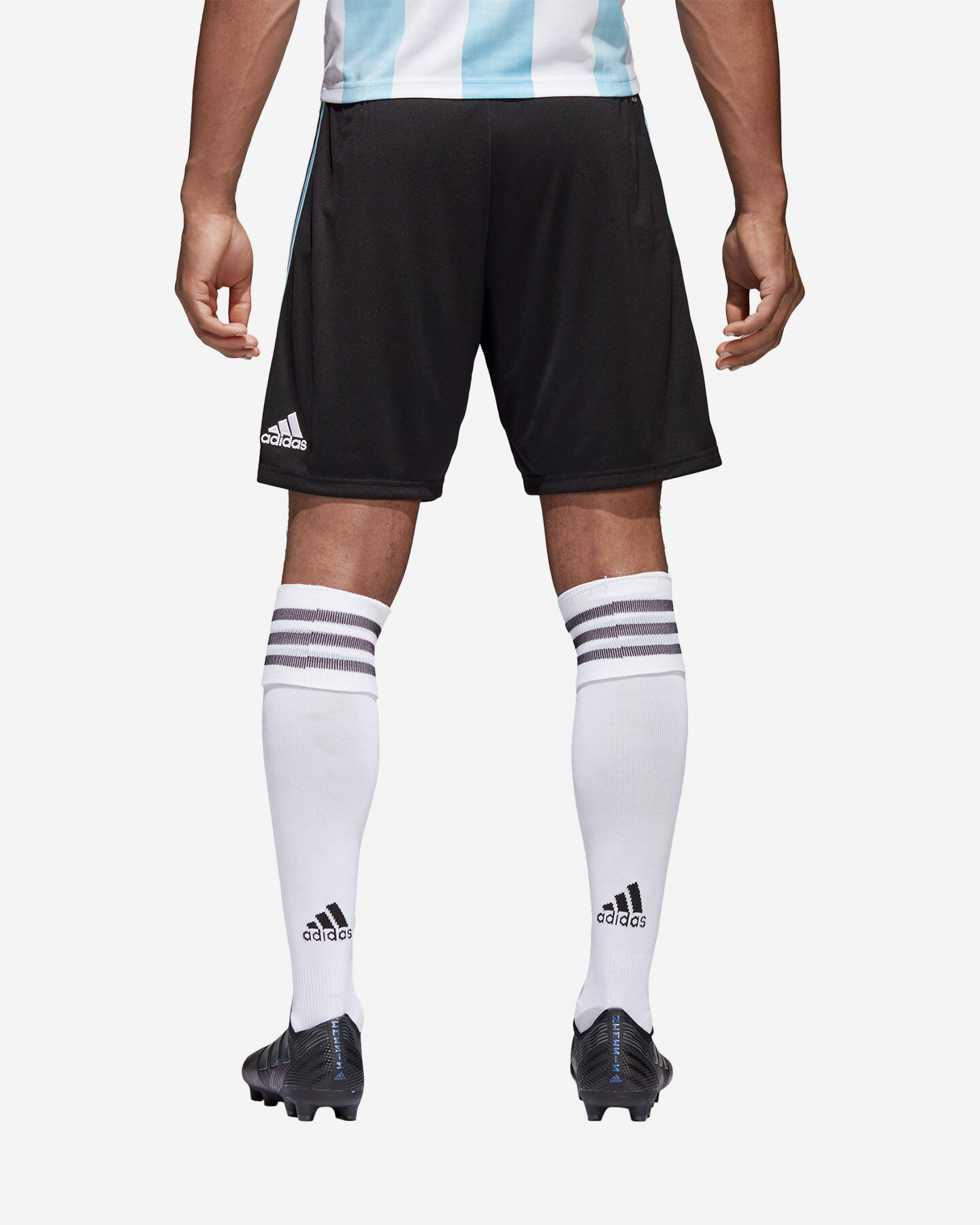 spray In ogni modo progenie  Pantaloncini Calcio Adidas Argentina World Cup 2018 M BQ9283 | Cisalfa Sport