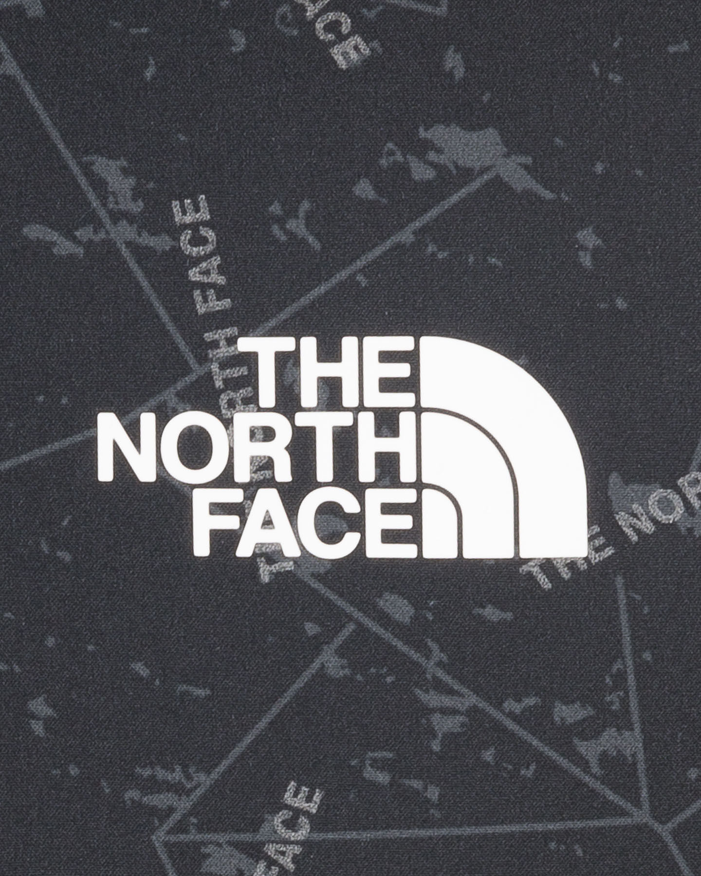 Pile THE NORTH FACE TRAIN LOGO OVERLAY M S5242987 scatto 2