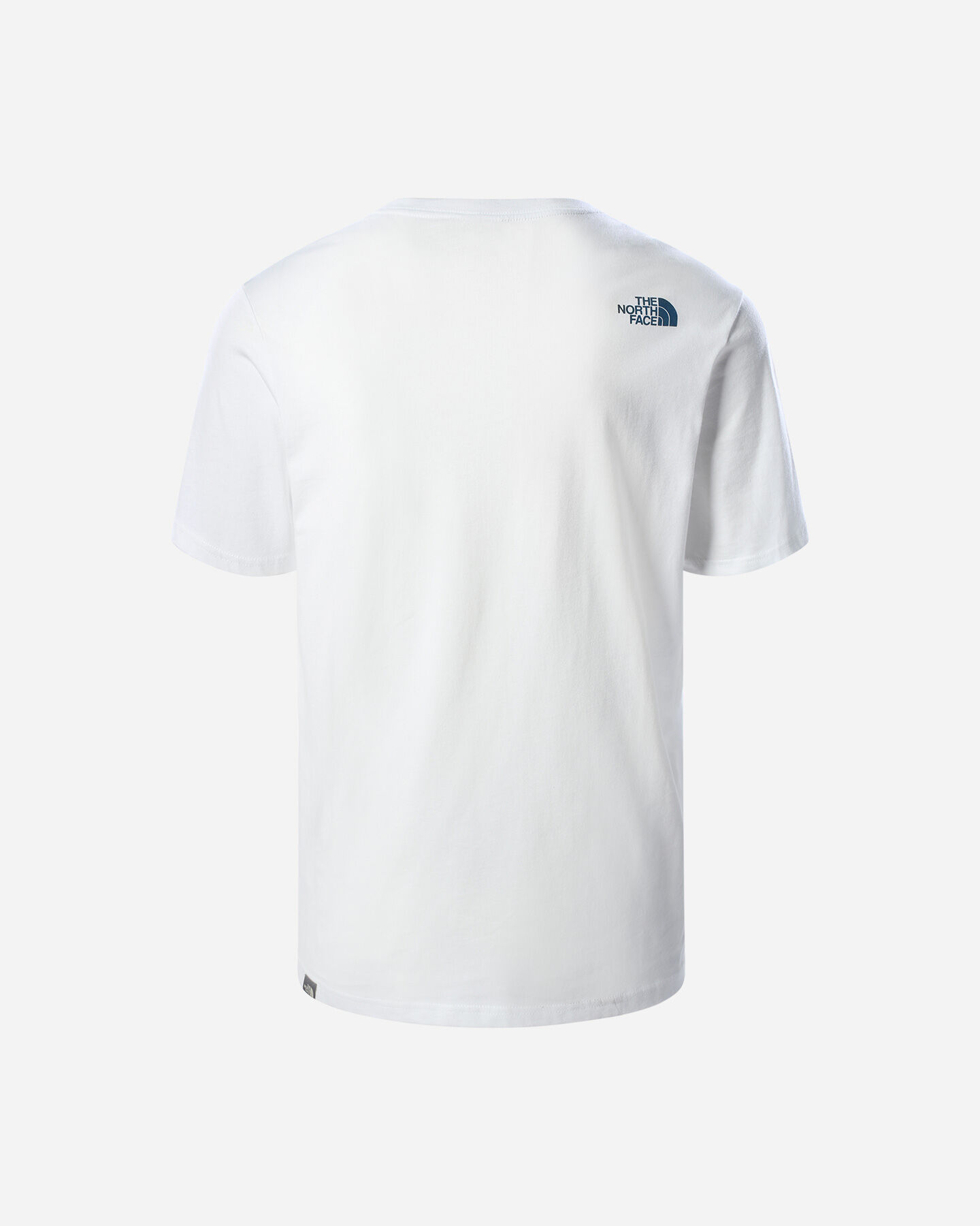 T-Shirt THE NORTH FACE CAMPAY BIG LOGO M S5296497 scatto 1