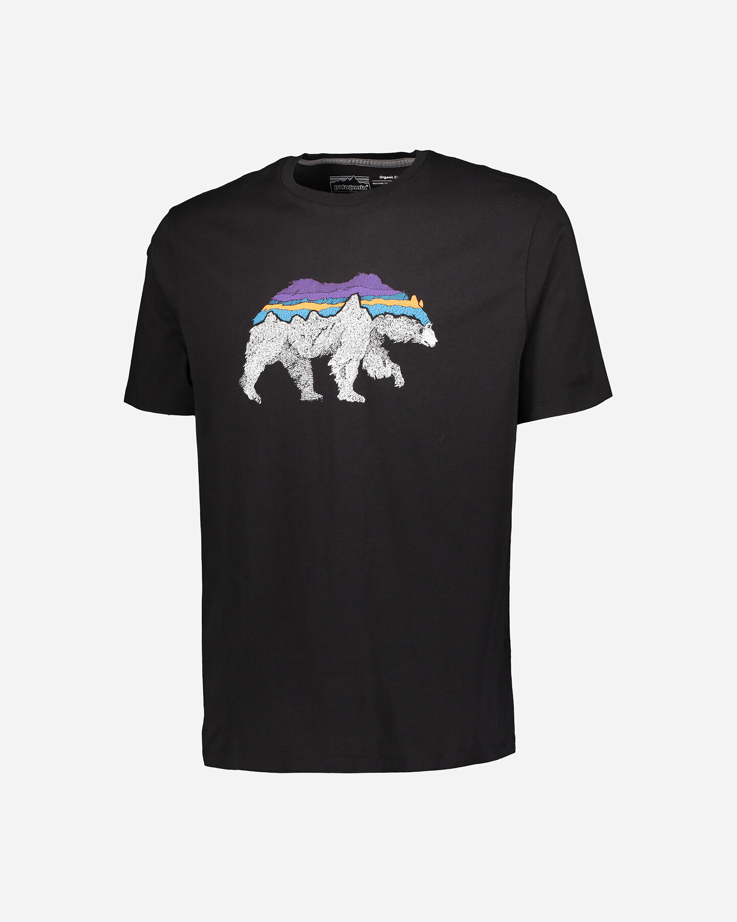 T-Shirt PATAGONIA BACK FOR GOOD ORGANIC M S4089222 scatto 0